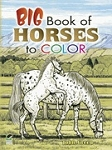 Big Book of Horses to Color