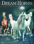 Dream Horses - A Poster Book