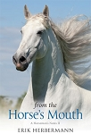From the Horse's Mouth - A Horseman's Notes II