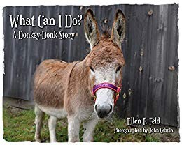 What Can I Do?: A Donkey-Donk Story (Donkey-Donk Series Book 1)