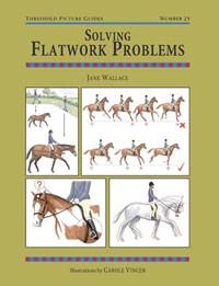 Solving Flatwork Problems (Threshold Picture Guide No 25)